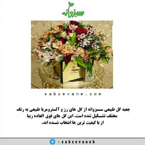 جعبه گل رز طبیعی سبزوانه FBS-350