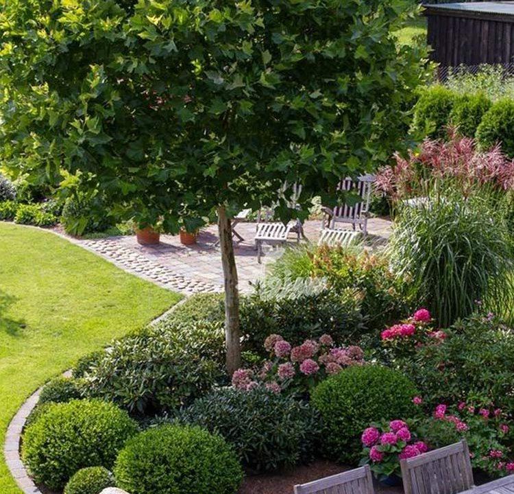 مراقبت از گیاهان و باغبانی در فصل بهار