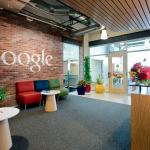 گوگل و گیاهان آپارتمانی
