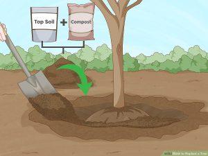 پر کردن چاله با خاک و مواد مناسب
